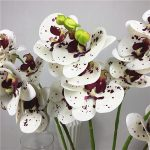 NEW-5-Heads-Orchids-branch-Artificial-Flowers-for-home-living-room-wedding-Decoration-white-orchid-flores
