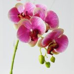 Orchids artificial flowers