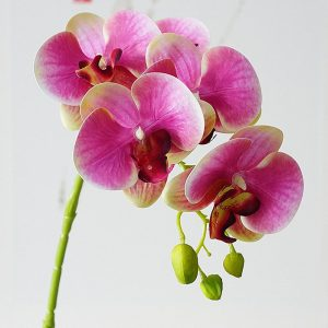 Real touch 5Heads Latex Orchids branch Artificial Flowers quality artificial flowers